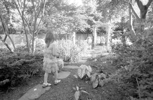 The Littlest Flower Girl